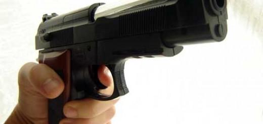 pistola2014