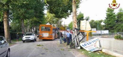 Autobus di linea finito contro un albero a Castelferretti