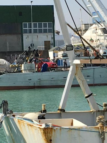 Furti nel porto di Fano: individuati e denunciati 4 giovani, uno è minorenne