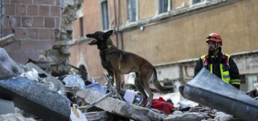 Earthquake in Amatrice