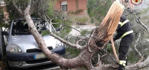Maltempo: raffiche di vento e danni