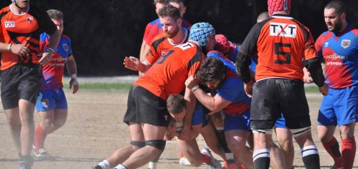 fanorugby2017