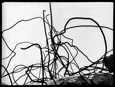 Fotografia: le opere di Mario Giacomelli alla Biennale di Mosca