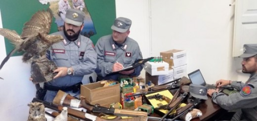Bracconaggio: 16 perquisizioni in provincia di Ancona