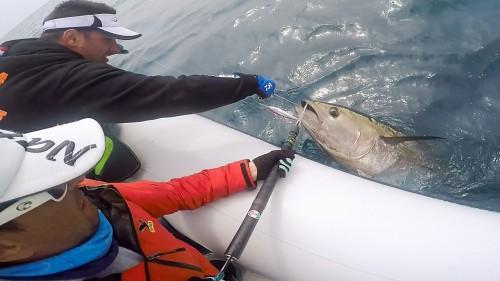 cattura del tonno