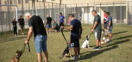 Carceri: educazione cinofila per i detenuti di Ancona