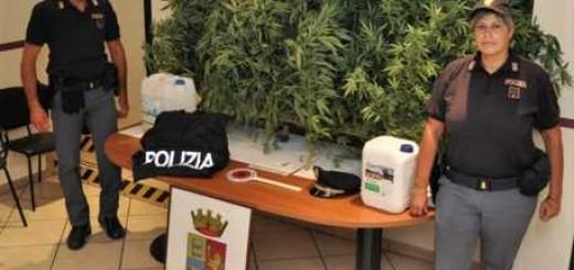 Finge raccogliere rifiuti e coltiva marijuana, arresto Ps